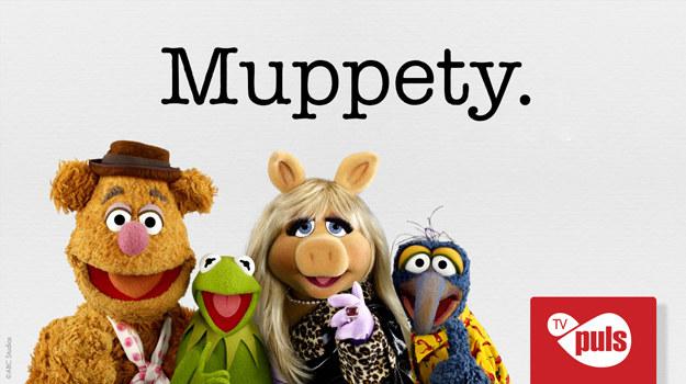 """Muppety"" /TV PULS /materiały prasowe"