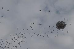 Mysłowice: Balony z imionami zmarłych dzieci poszybowały w niebo