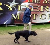 Na happening zaproszeni są właściciele psów ze swoimi pupilami /AFP