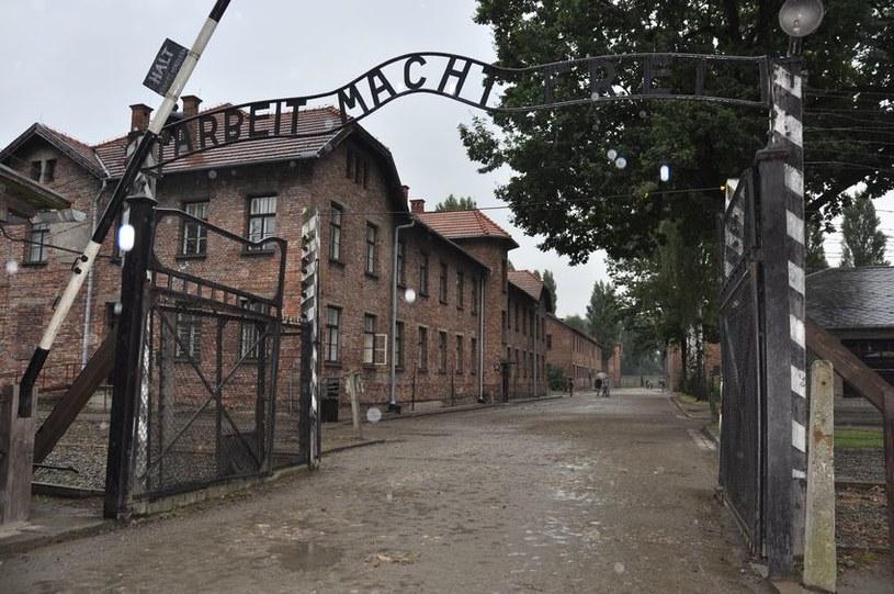 """""""Na Holokaust pracowały przez wieki całe pokolenia Żydów"""". Między innymi za tę wypowiedź prof. Jasiewicz stracił stanowisko /123RF/PICSEL"""