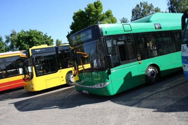 Na imprezie można było obejrzeć autobusy /INTERIA.PL