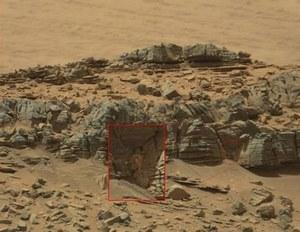 Na jednym ze zdjęć Marsa uwieczniono coś co wygląda na... kraba