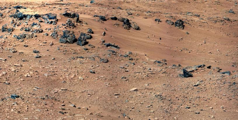 Na Marsie może istnieć życie oparte na nadchloranach. /AFP