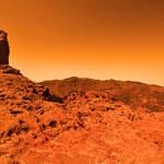 Na Marsie wciąż żyją bakterie?