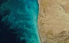 """Na Morzu Kaspijskim zaobserwowano """"wiry mleczne"""""""