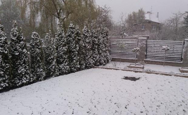 Na Pomorzu sypnęło śniegiem [ZDJĘCIA]