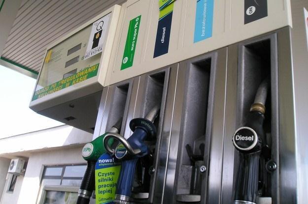 Na stacjach powinien być już diesel w wersji zimowej /INTERIA.PL