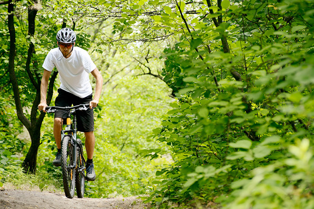 Na wycieczkę rowerową zapraszamy do Trójmiejskiego Parku Krajobrazowego /materiały prasowe