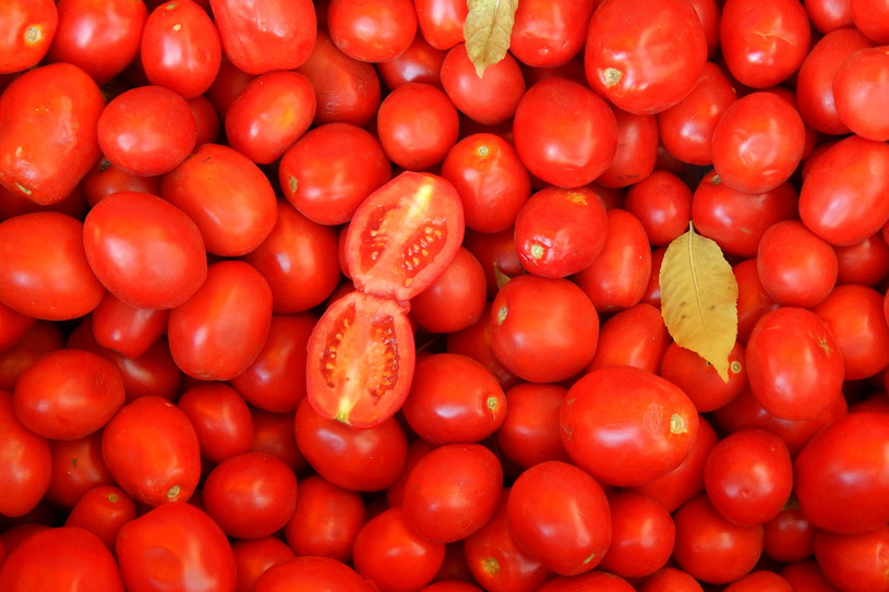 Najcenniejszym skarbem, jaki mają nam do zaoferowania pomidory jest likopen, bardzo silny przeciwutleniacz. Jego działanie doceni szczególnie cera dojrzała, ale także sucha i zmęczona /123RF/PICSEL