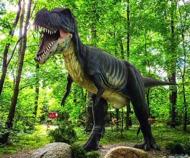 Najczęstsze błędy w książkach o dinozaurach