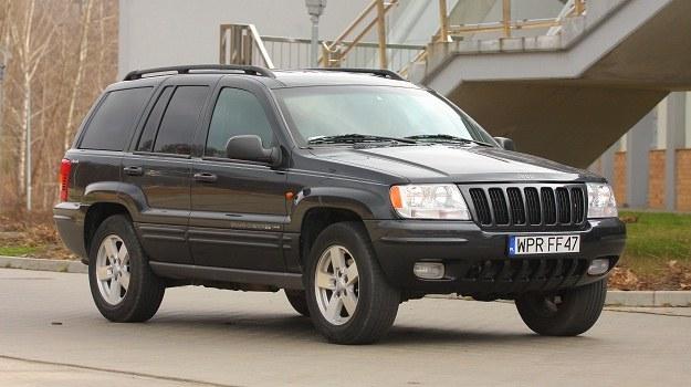 Najlepszy wybór to 2.7 CRD z Mercedesa, najgorszy - bez wątpienia włoski diesel 3.1 TD. /Motor