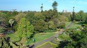 Najpiękniejsze parki w Sydney