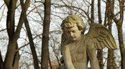Najpiękniejsze polskie cmentarze