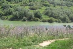 Najstarsze góry w Polsce pełne dzikich róż