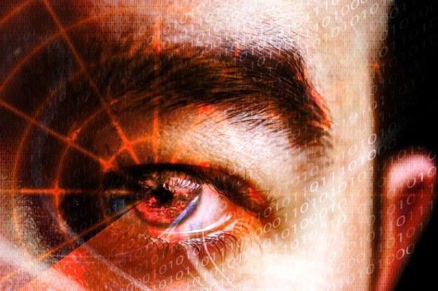 Największe firmy z branży IT nie chcą inwigilacji internautów /©123RF/PICSEL