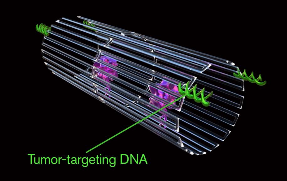 Nanoroboty z cząsteczkami trombiny i aptamerami DNA (zielone) /Jason Drees, Arizona State University /Materiały prasowe