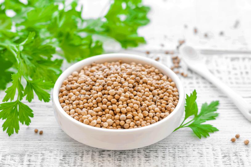 Napar z nasion kolendry pomoże na zapalenie spojówek /123RF/PICSEL