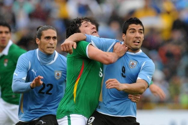 Napastnik Urugwaju Luis Suarez (z prawej) /. /AFP