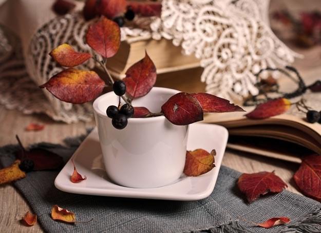 Napój pozyskiwany z liści kawowca może stanowić dużą konkurencję dla tradycyjnej małej czarnej /Picsel /©123RF/PICSEL