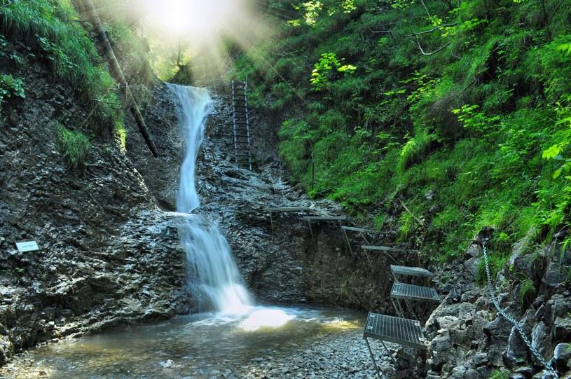 Narodowy Park na Słowacji /©123RF/PICSEL
