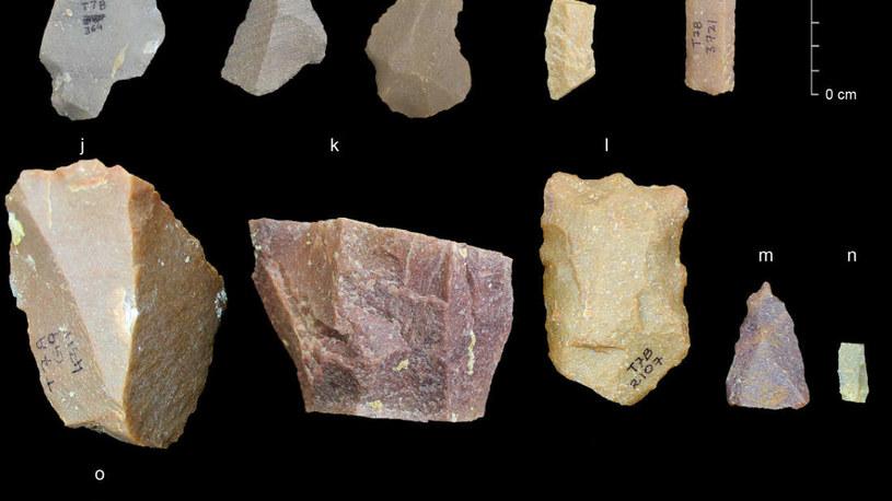 Narzędzia znalezione w Indiach /materiały prasowe