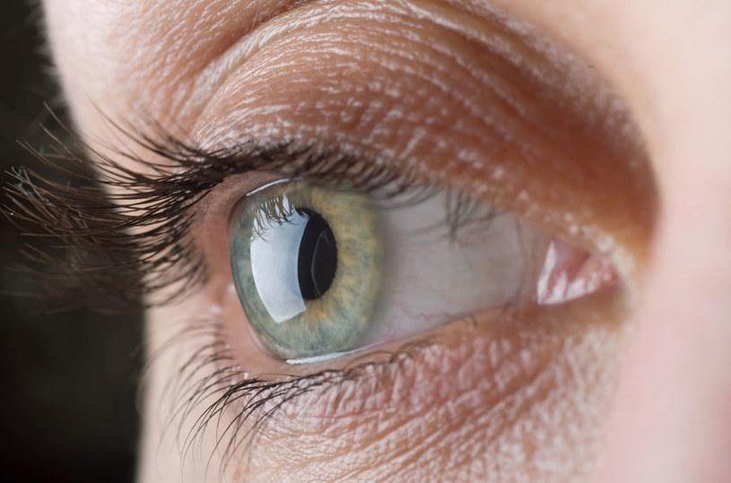 Naukowcy przywrócą wzrok milionom ludzi na całym świecie? /123RF/PICSEL