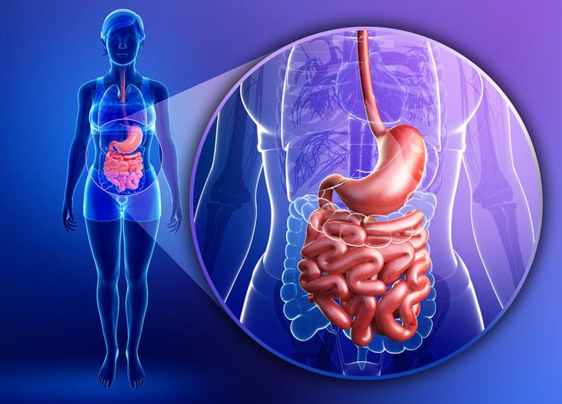 Naukowcy są blisko opracowania uniwersalnego testu wykrywającego raka jelita grubego /©123RF/PICSEL