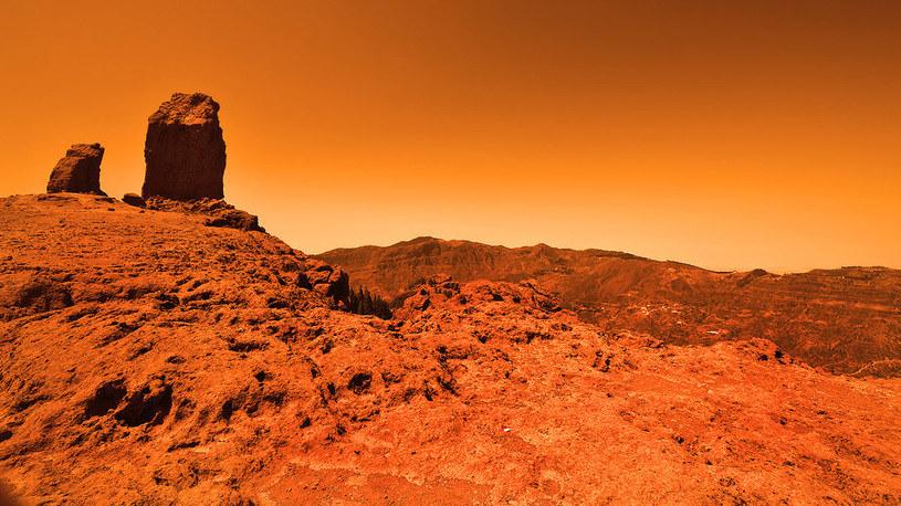 Naukowcy wiedzą, co stało się z wodą na Marsie /materiały prasowe