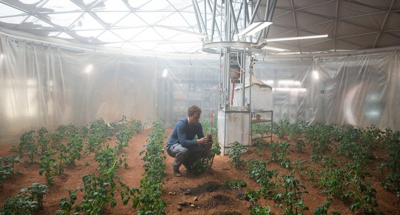 """Naukowcy wiedzą jak hodować ziemniaki na Marsie - podobne jak w filmie """"Marsjanin"""" /materiały prasowe"""