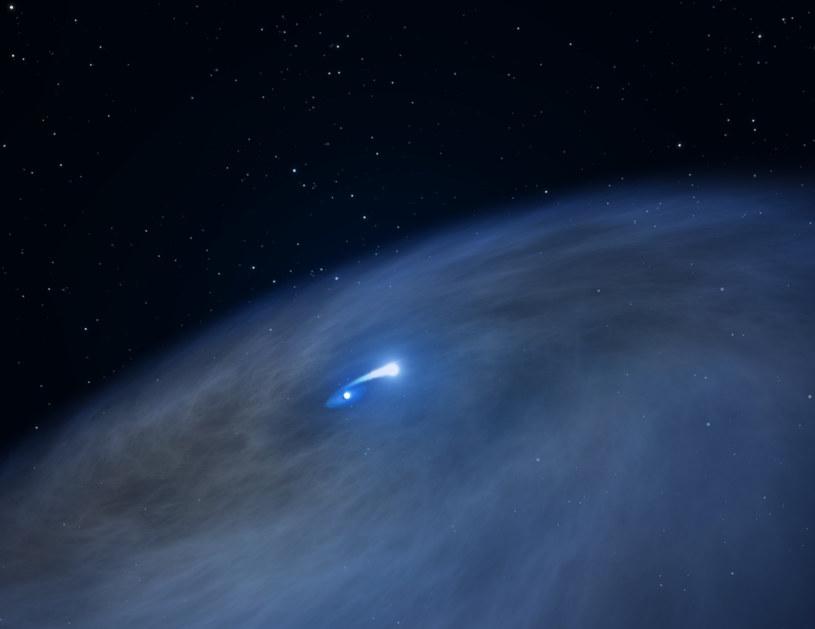Naukowcy wreszcie dostrzegli gwiazdę Wolfa-Rayeta /NASA