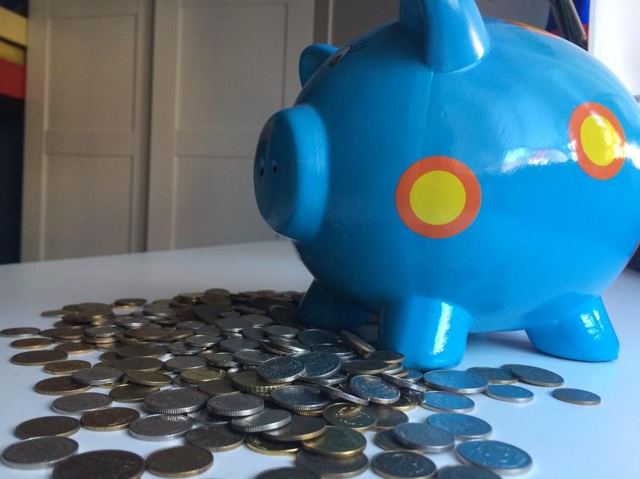 NBP wyliczył średni majątek gospodarstwa domowego /Monika Kamińska /RMF FM
