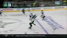 NHL: Dallas Stars - Minnesota Wild 4-0. Skrót meczu