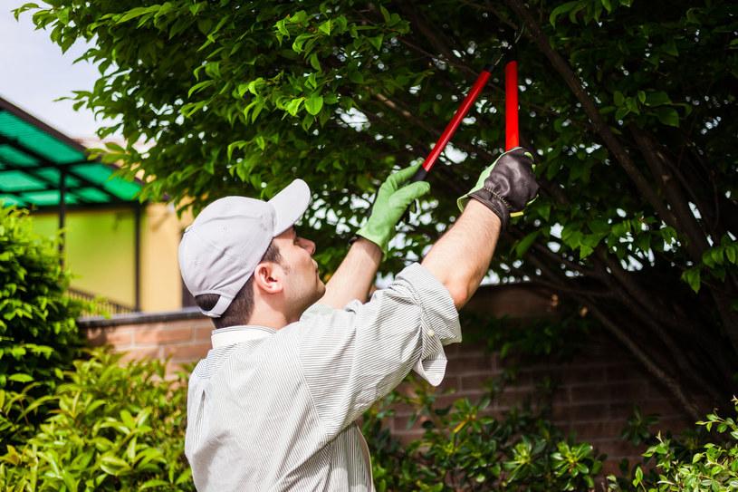Nie wolno trzymać długo rąk w górze, np. przy pracach ogrodowych! /©123RF/PICSEL