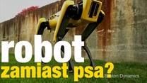 Nie zostawia sierści i nie załatwia się. Psi robot zastąpi żywego pupila?