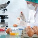 Niebezpieczna bakteria pomoże walczyć z rakiem