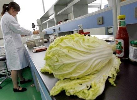 Niedługo spróbujemy wędlin z warzywnym dodatkiem. /AFP