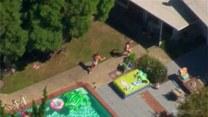Niedźwiedzica przyszła się ochłodzić. Chciała skorzystać z basenu?
