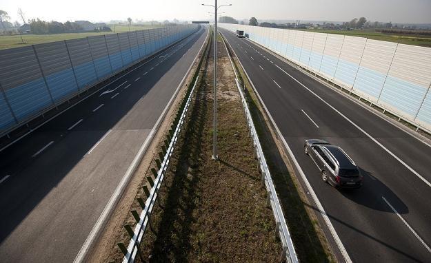 Niektóre drogi przypominają tunele... / Fot: Michał Kość /Reporter