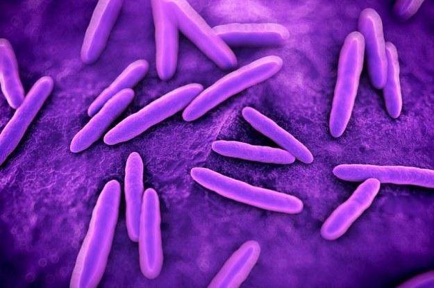 Niektóre ziemskie bakterie mogłyby przetrwać w kosmosie? /©123RF/PICSEL