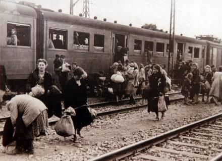 Niektórym udało sie przeżyć koszmar obozu innym nie... / fot. A. Barbarowski /Agencja SE/East News