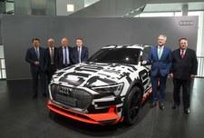 Niemcy: Bram Schot ma zostać tymczasowym szefem Audi