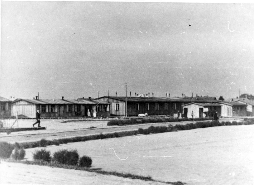 Niemiecki obóz przesiedleńczy w Zamościu /IPN