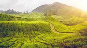 Niesamowite miejsca w Malezji