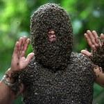 Nietypowe hobby. Wabi pszczoły, by obsiadły jego ciało