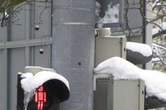 Nietypowe znaki przy przejściach dla pieszych w Szczecinie