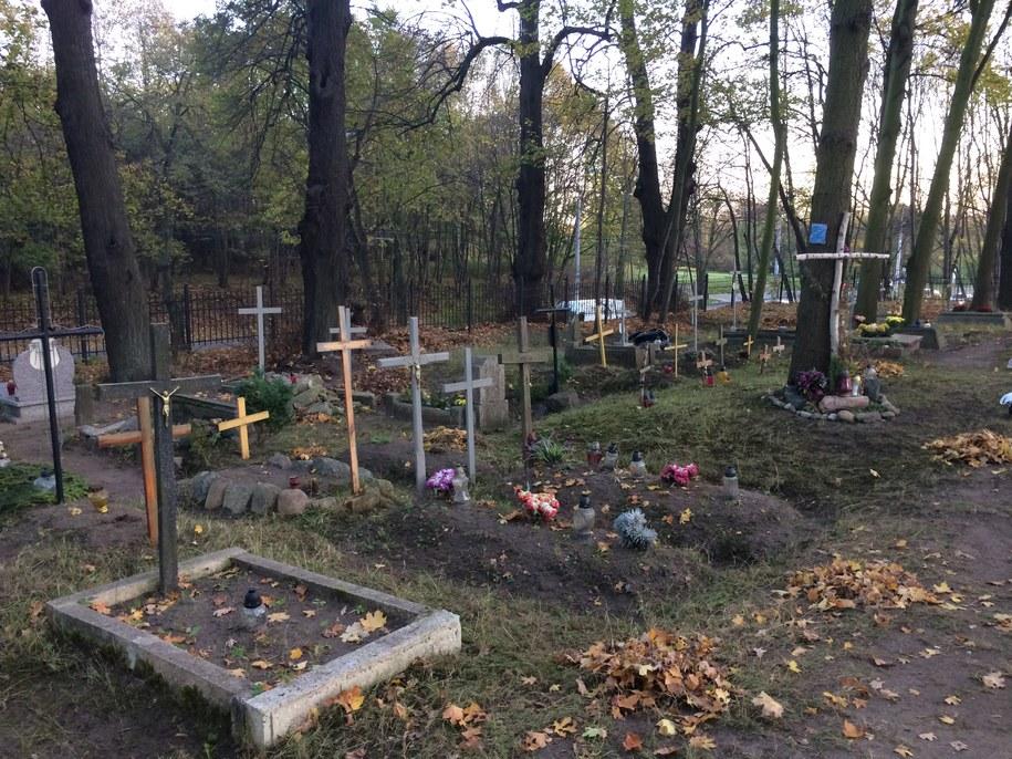 Niewielka nekropolia w Gdyni Orłowie /Kuba Kaługa /RMF FM
