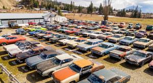 Niezwykła kolekcja starych aut na sprzedaż