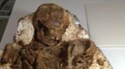 Niezwykłe szczątki z epoki kamienia łupanego