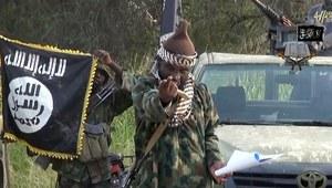 Niger: Zlikwidowano 12 bojowników Boko Haram