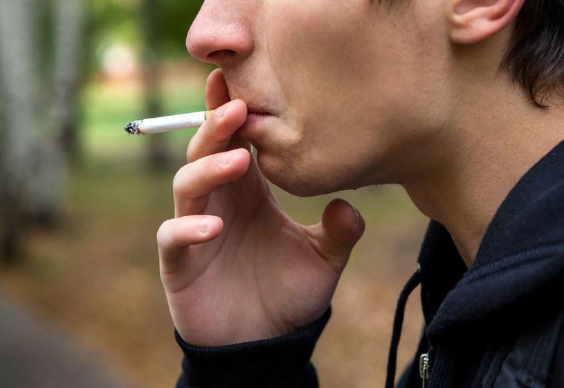 Nikotyna atakuje nie tylko płuca /123RF/PICSEL
